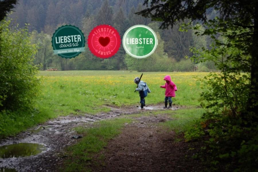 Gute Fragen geben Einblicke #Liebster Award
